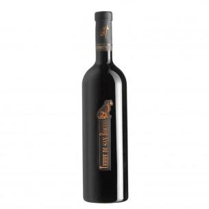 cabernet franc 2009 igt 75 cl terre di san rocco - enoteca pirovano